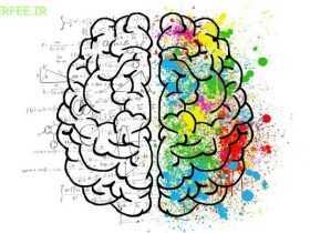 انواع هوش در زندگی ما چه کاربردی دارد؟