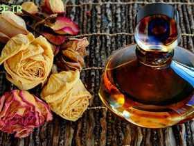 انواع عطر و خوشبوکننده چه تفاوتی با هم دارند؟