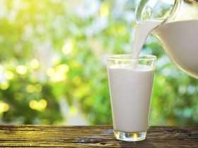 پیشگیری از چاقی با مصرف شیر کامل