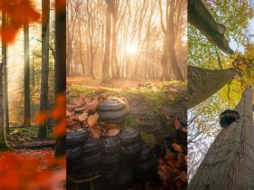 ۱۲ نکته برای عکاسی پاییزی