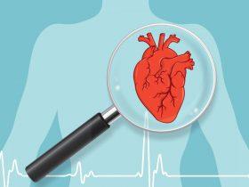 هر آنچه در مورد بیماریهای قلبی باید بدانید
