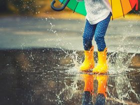 ۷ نکته برای گرفتن عکسهای چشمنواز در روزهای بارانی