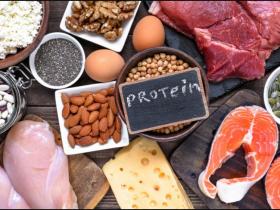 انواع پروتئین ها و وظایف آنها